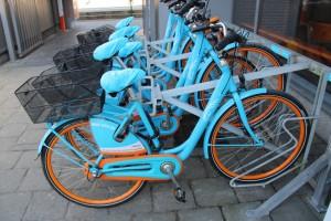 Blue-bike fietsen Persregio Dender