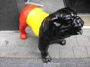 De Rode Duivels hond Persregio Dender