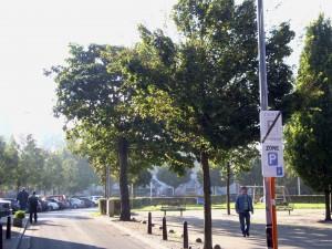 Hoveniersplein Aalst Persregio Dender