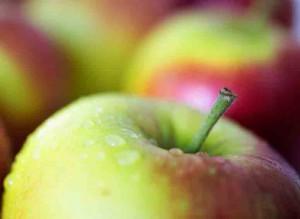 Fairtrade eet een appel Persregio Dender