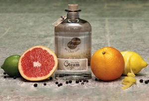 Balegemse stokerij brengt nieuwe Steam Gin uit Persregio Dender