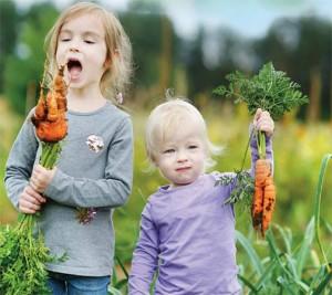 Kinderen in de tuin trekken wortels uit Persregio Dender